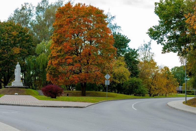 Dobele Lettland Höststadslandskap med vägen och kulöra lönnar arkivbild