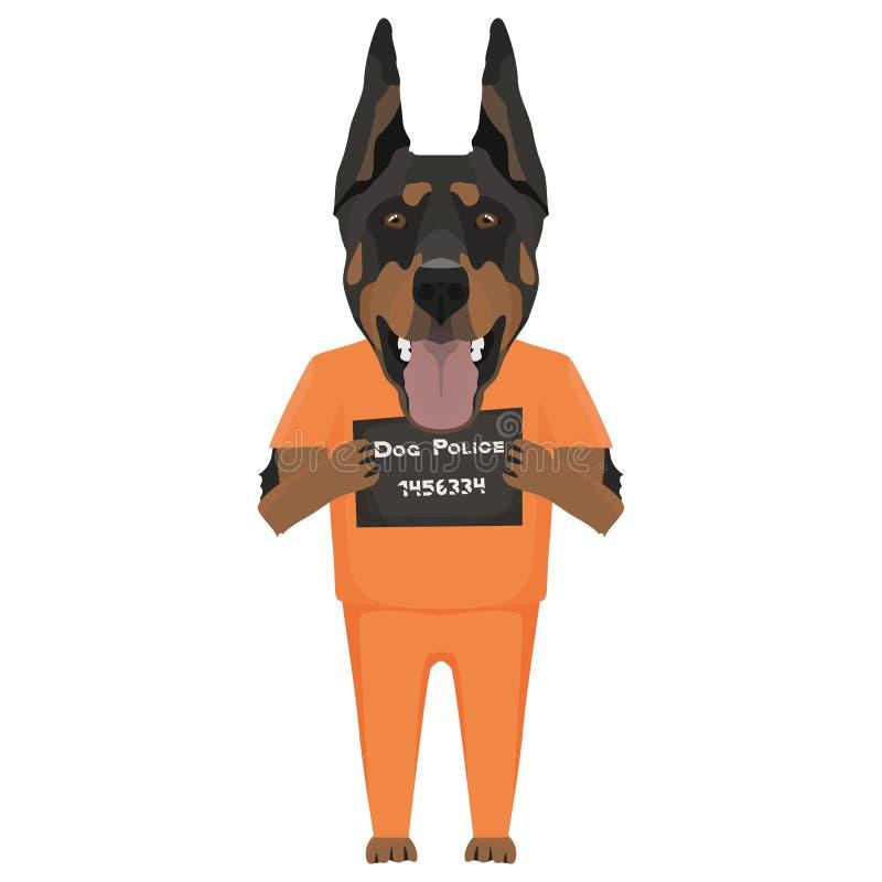 Doberman del perro de la ropa de la prisi?n del Mugshot ilustración del vector