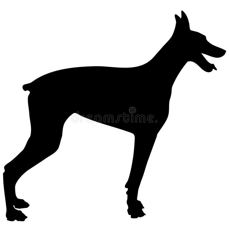 Download Doberman Silhouette stock photo. Image of pinscher, black - 31987428
