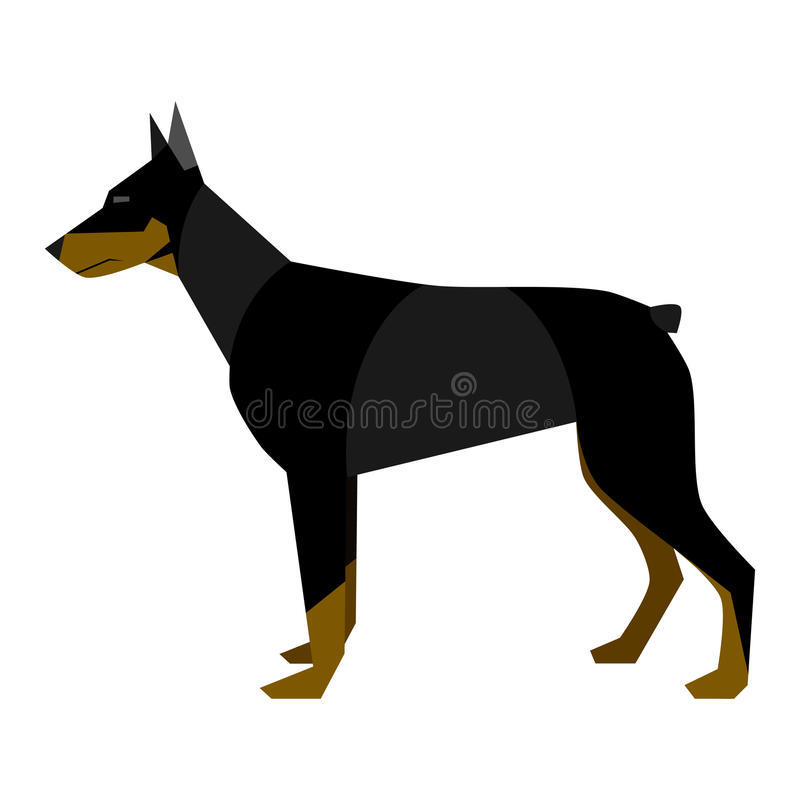 Download Doberman stock vector. Illustration of isolated, vector - 32010157