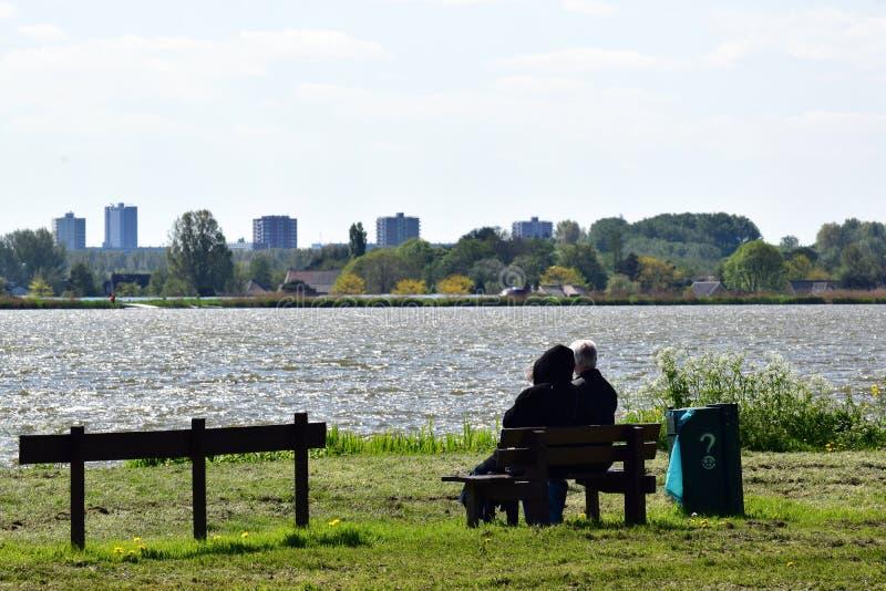 Dobiera się na drewnianej ławce przyglądającej nad jeziorem out Rotterdam w tle obraz stock