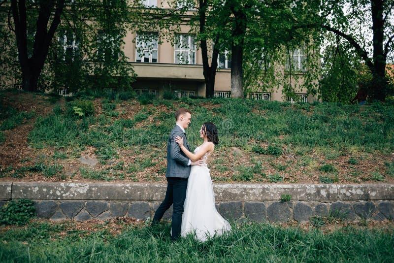 Dobiera się w miłości państwo młodzi, spacer w świeżym powietrzu Natura, trawa i zieleni drzewa, zdjęcia royalty free