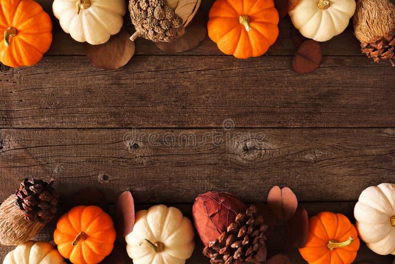Doble borde otoño de calabazas mixtas y decoración de bellota, encima de la vista sobre el fondo de madera oscura fotos de archivo libres de regalías