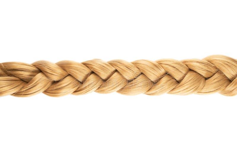 Dobra ou trança loura do cabelo louro no fundo branco fotografia de stock royalty free