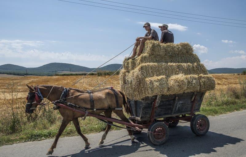 Dobrogea, Румыния, Европа, сельский ландшафт стоковое фото