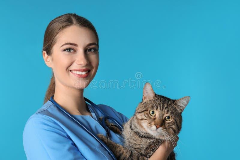 Doc. de vétérinaire avec le chat sur le fond de couleur photographie stock
