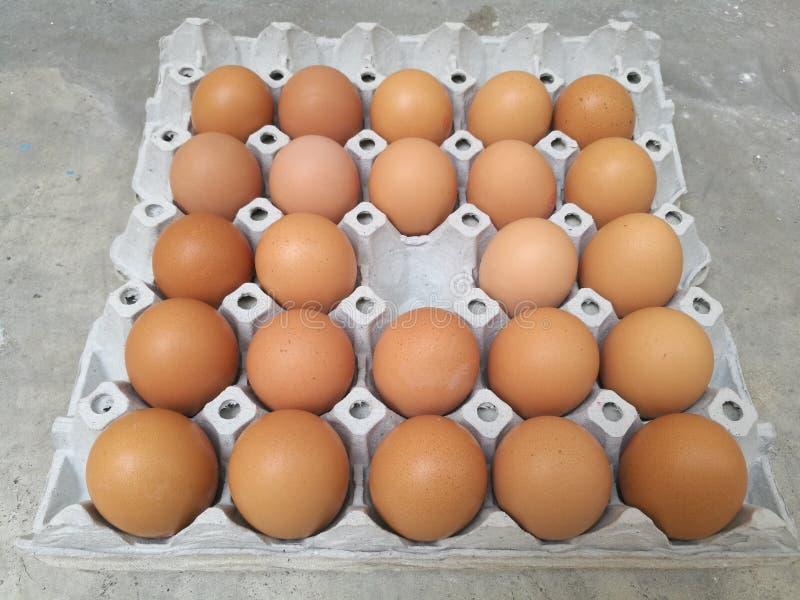 Docena de huevo del pollo para cocinar el desayuno en la bandeja del almacenamiento del huevo con desaparecidos del centro del hu imagen de archivo