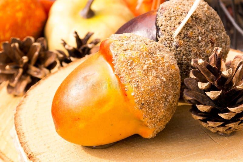 Doces da bolota e grãos do pinho em cores do outono imagem de stock royalty free