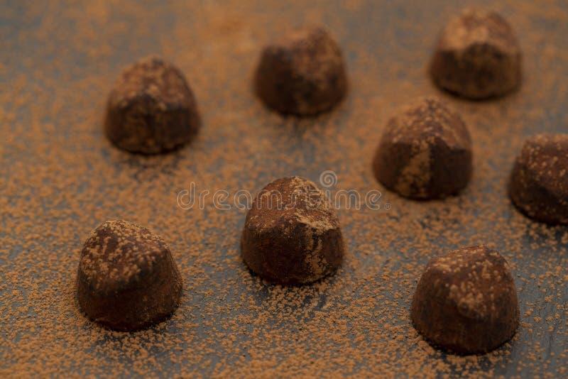 Doces de chocolate da trufa no p? de cacau Alimento gourmet, sobremesa deliciosa imagens de stock royalty free