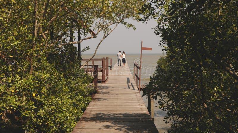 Dock en bois en Forest Leading vers la mer photographie stock