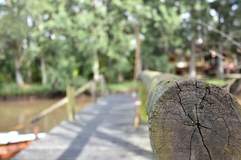 Dock nautaleza forest background stock photography