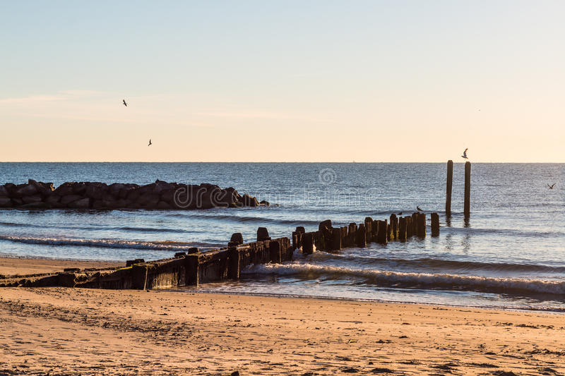Dock pilings and rock jetty at buckroe beach stock image for Dock pilings cost