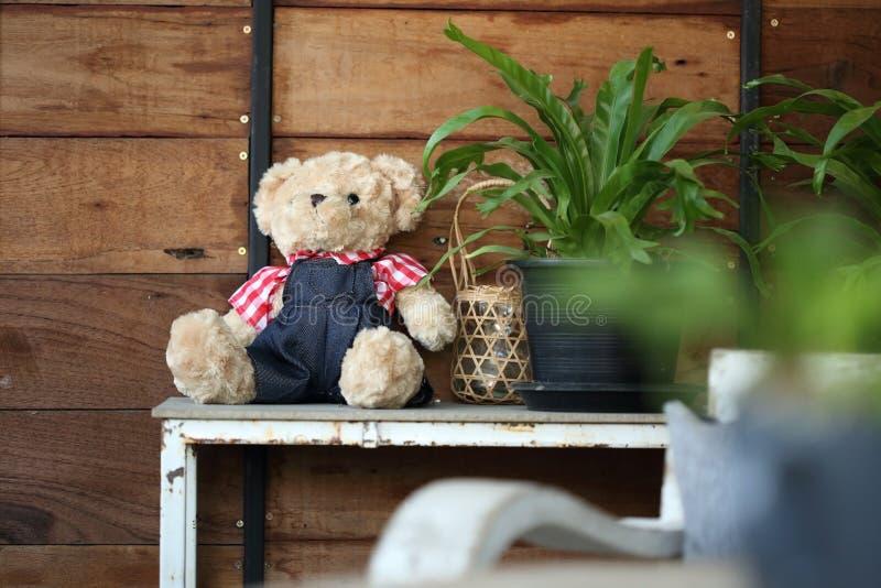 Dockanallebjörnen behandla som ett barn dekorerat i hem arkivbild