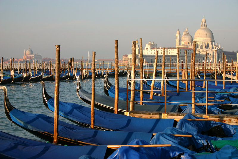 Docked Gondolas in Morning Light royalty free stock photography