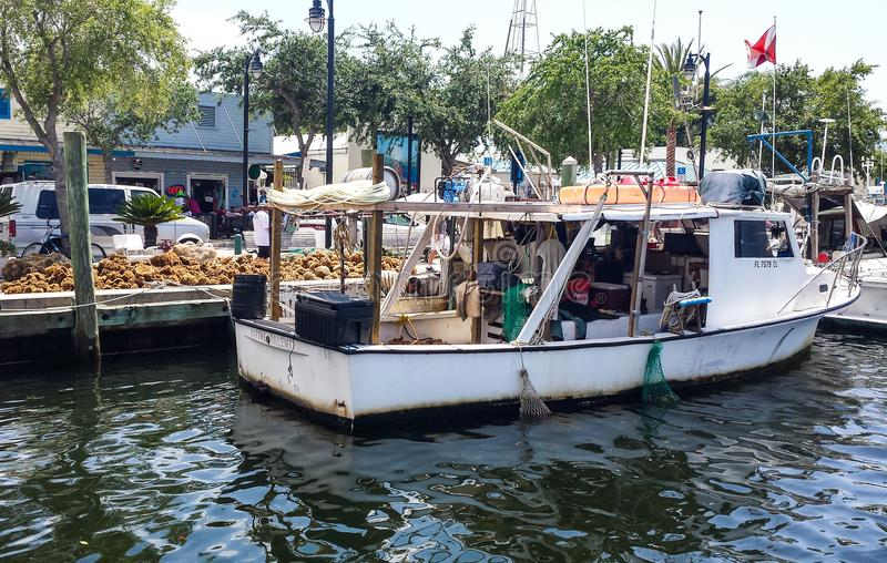 Docks d'éponge photographie stock libre de droits
