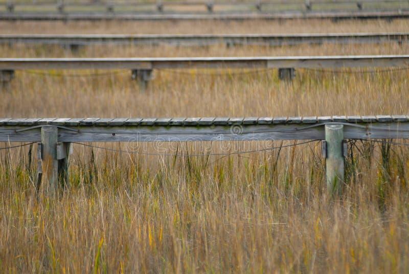 Download Docks In The Marsh Stock Photo - Image: 2450100