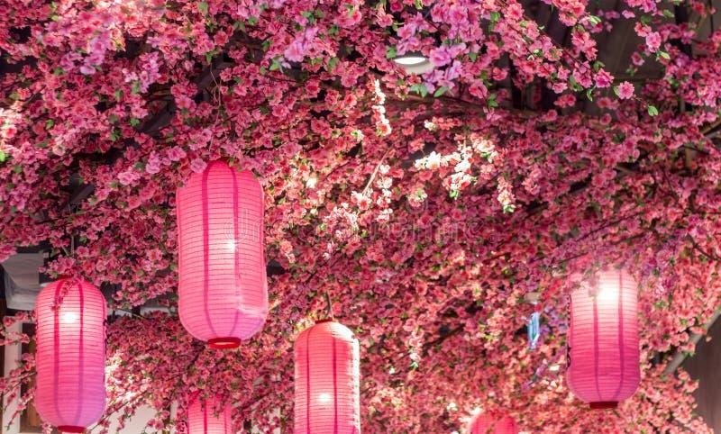 Docoration rosa dell'albero del fiore di sakura e della lanterna fotografia stock libera da diritti