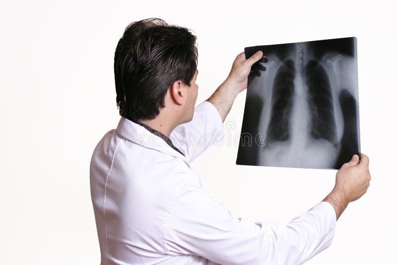 Docteur avec le rayon X photo stock