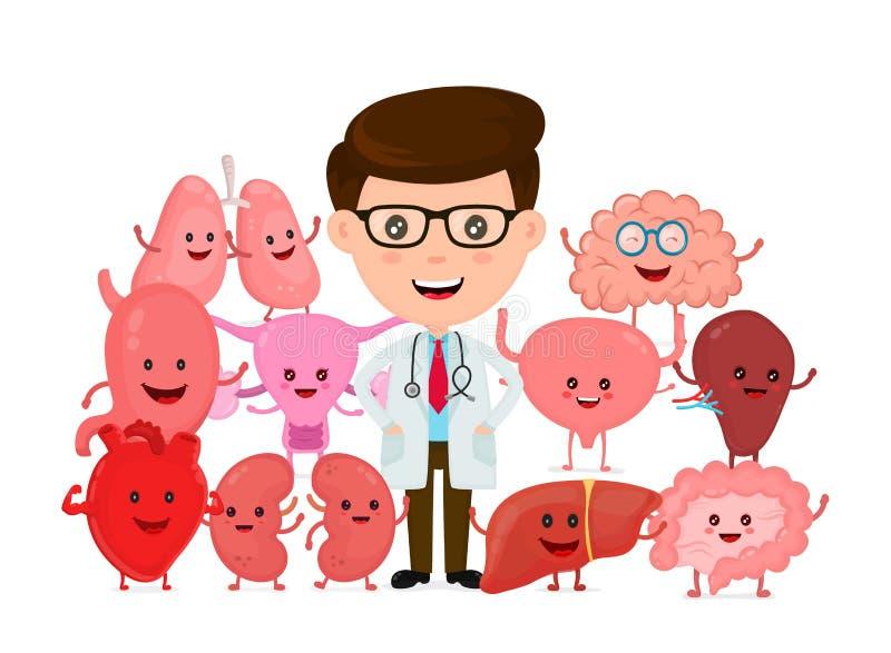 Docteur avec les organes internes humains Vecteur illustration libre de droits