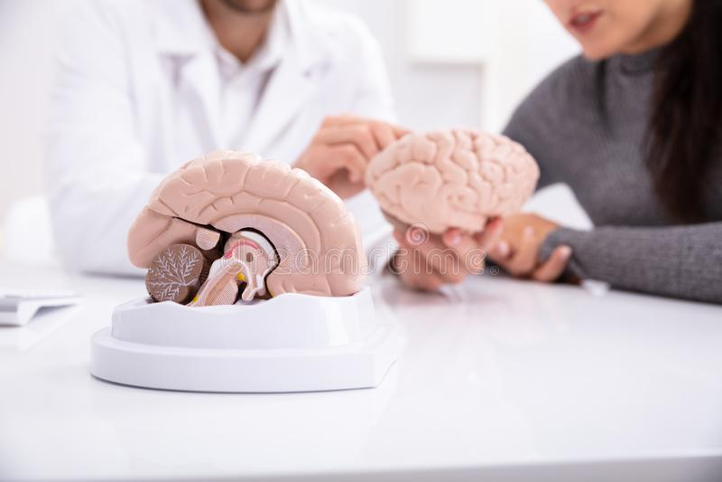 Docteur Explaining Details Of Brain To Woman humain images libres de droits