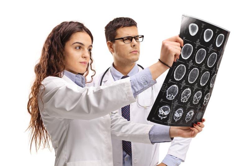 Docteur féminin et masculin regardant un balayage de rayon X images stock