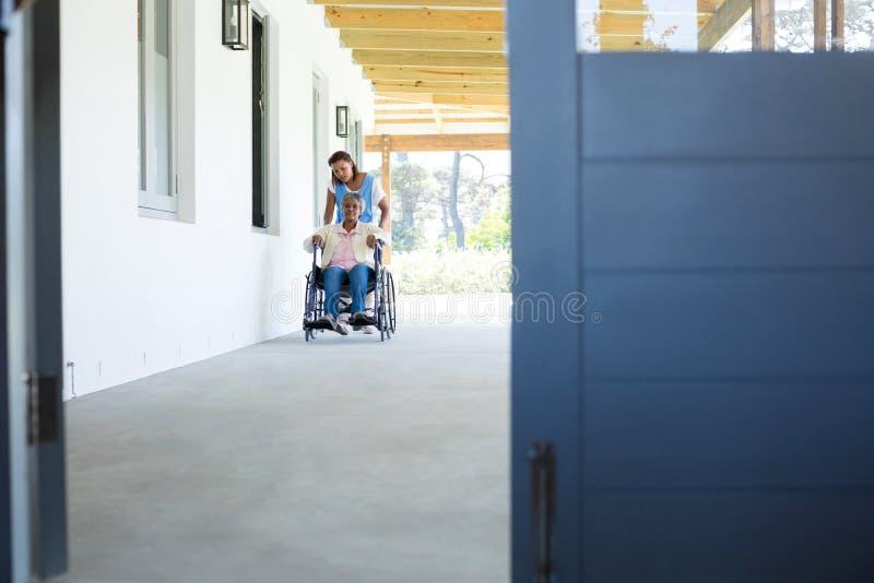 Docteur féminin poussant le patient supérieur heureux dans le fauteuil roulant images stock