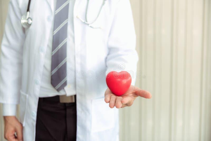 Docteur masculin supérieur de médecine tenant le coeur sur le fond abstrait , Portrait en gros plan de docteur professionnel donn image libre de droits