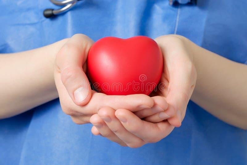 Docteur tenant un coeur photo libre de droits