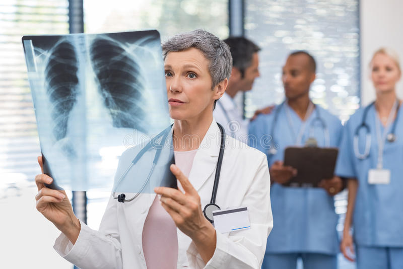 Doctor analyzing xray royalty free stock image