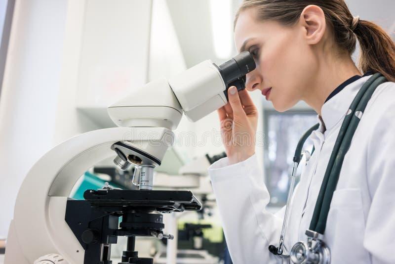 Doctor or biologist scrutinizing tissue under microscope. Doctor or biologist with stethoscope scrutinizing tissue under microscope stock photo