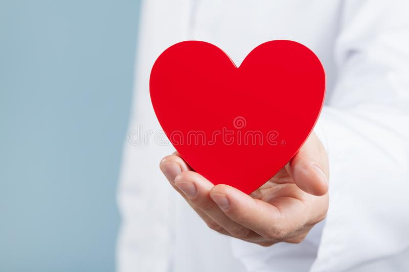 Doctor cardiologist holding a red heart in his hands. Cardiology and heart disease concept. Doctor cardiologist holding a red heart in his hands. Cardiology and stock photo