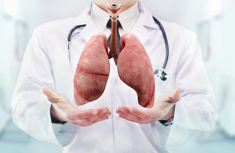 Doctor con el estetoscopio y los pulmones en las manos en un hospital foto de archivo libre de regalías