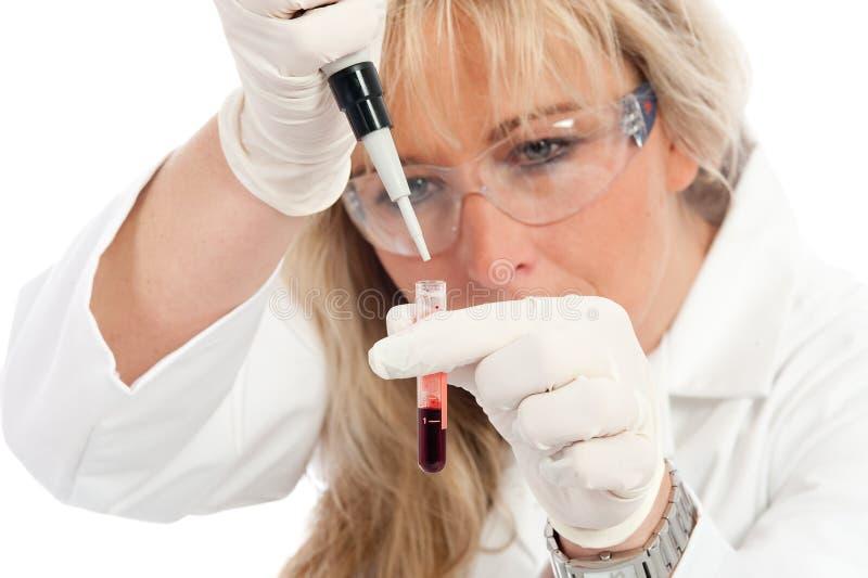 Doctor con la extracción de la sangre imagenes de archivo