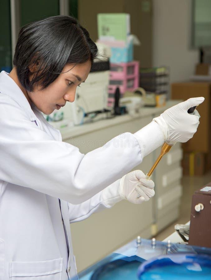 Doctor con la pipeta auto en el laboratorio fotografía de archivo libre de regalías