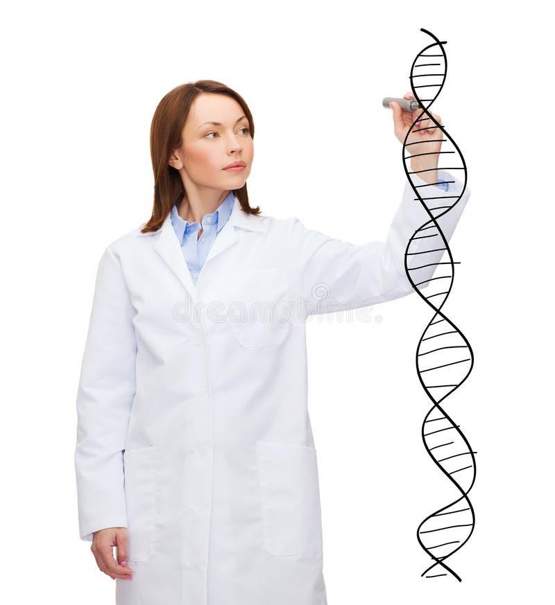 Doctor de sexo femenino joven que escribe la molécula de la DNA imagen de archivo libre de regalías