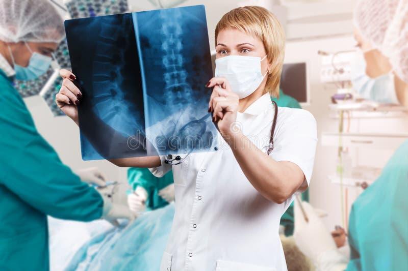 Doctor de sexo femenino que mira una radiografía de la espina dorsal fotos de archivo libres de regalías