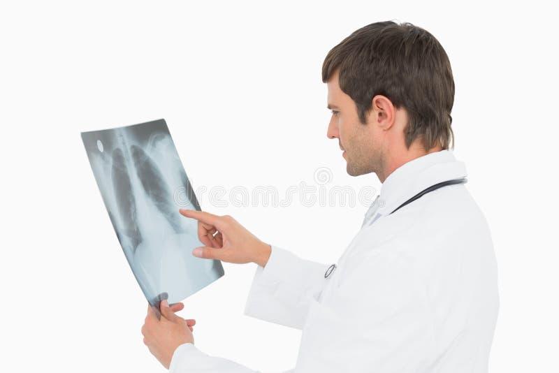 Doctor de sexo masculino concentrado que mira la imagen de la radiografía de pulmones foto de archivo libre de regalías