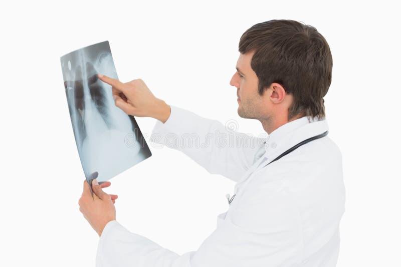 Doctor de sexo masculino concentrado que mira la imagen de la radiografía de pulmones fotografía de archivo libre de regalías