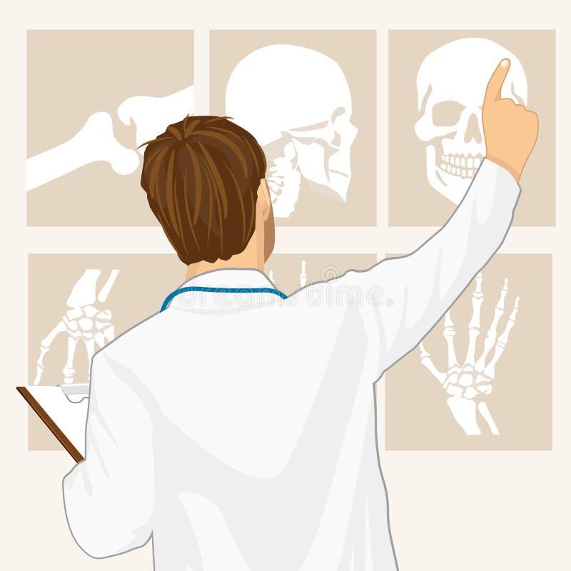 Doctor de sexo masculino que señala en la tomografía libre illustration