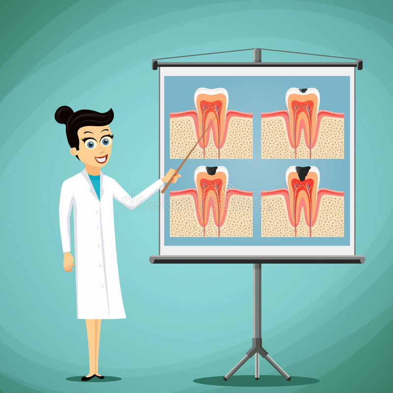 Doctor dentist shows on a blackboard diagram of the human tooth. stock illustration