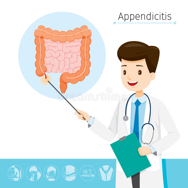 Doctor Describes About Cause To Appendicitis Stock Vector ...