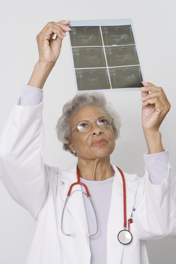 Doctor Examining X-Ray Report. Senior female doctor examining x-ray report in clinic stock image