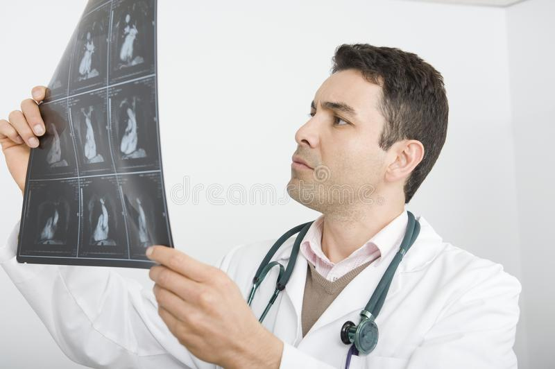 Doctor Examining X-Ray Report. A male doctor examining the x-ray report at clinic stock image