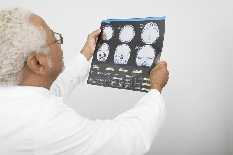 Doctor Examining X-Ray Report In Clinic. An African American male doctor examining x-ray report in clinic royalty free stock images