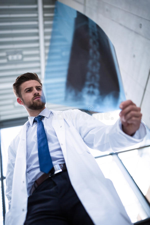 Doctor examining X-ray report. In hospital royalty free stock photography
