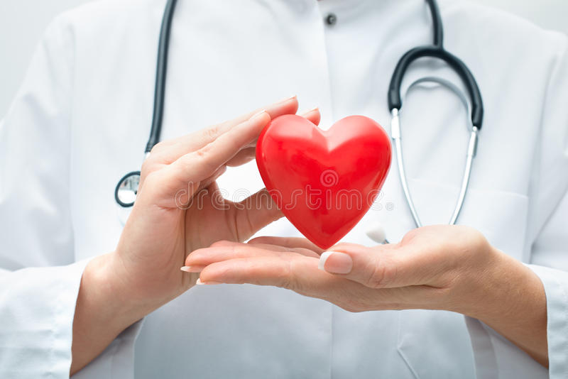 Doctor holding heart stock images