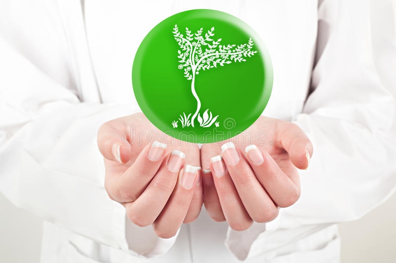 Doctor holding nature symbol in her hands. Doctor woman holding nature symbol in her hands royalty free stock photo