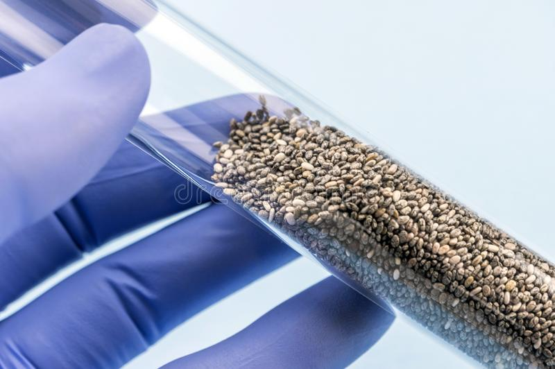 Doctor holds test tube with seeds for study in a laboratory stock image