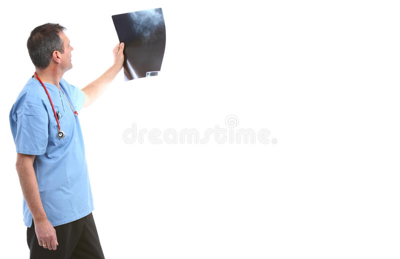 Download Doctor looking at a xray stock photo. Image of doctor - 26051770