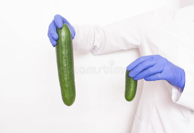 A doctor in medical gloves holds two different sized cucumbers. Concept of increasing penis in men, viagra. A doctor in medical gloves holds two different sized stock photo